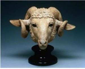 Curly horned sheep from Greece around 300 BC