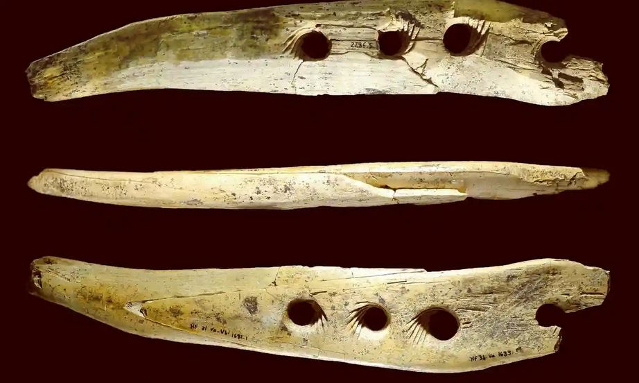 Ancient rope making tools made of bone and tusk