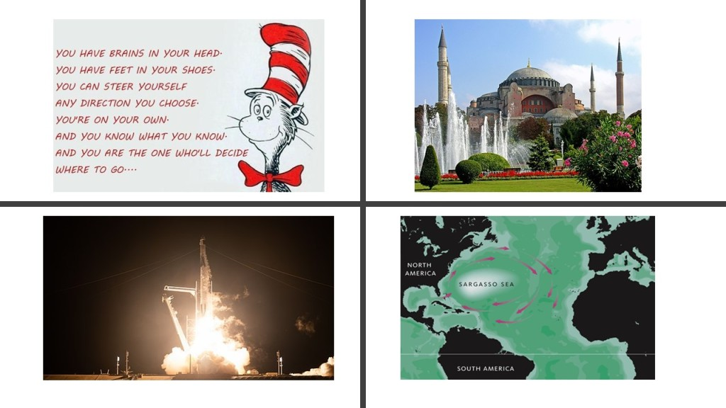 Quote from Dr Seuss, Hagia Sophia, SpaceX and Sargasso Sea