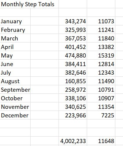 Table showing monthly step totals and average daily steps. total steps for the year are 4,202,233 - till the 21 December.