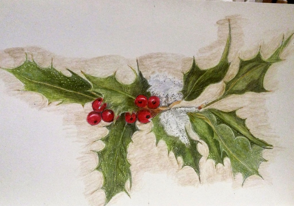 drawing of holly leaves with berries and a small amount of snow. Done in coloured pencils.
