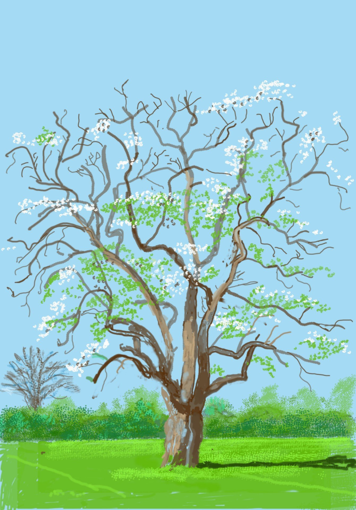 ipad painting of tree in blossom in Normandy, France.
